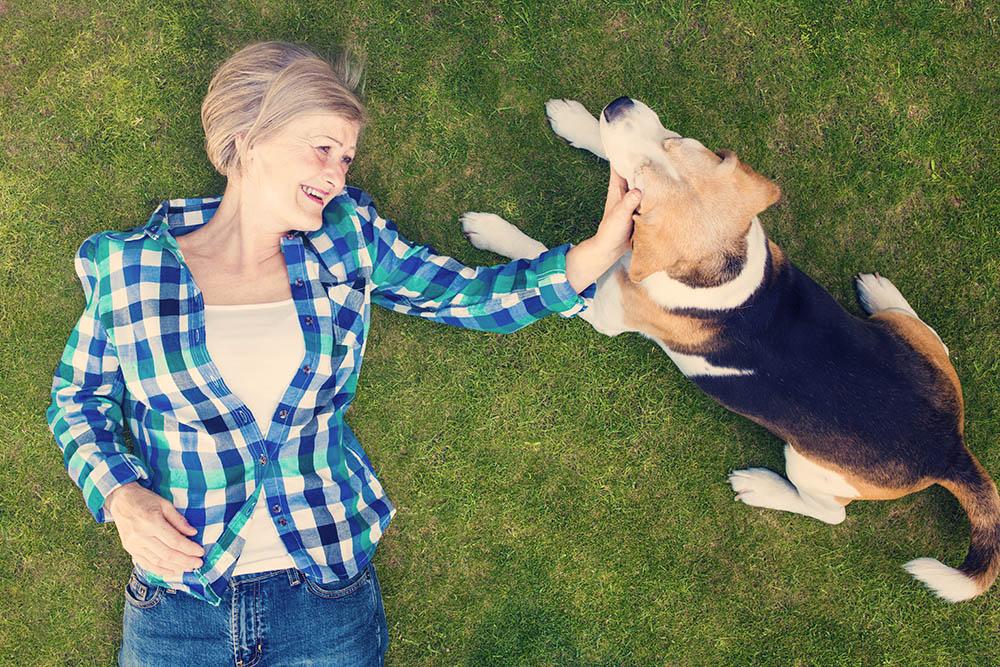 Cos'è e a cosa serve la Pet Therapy?